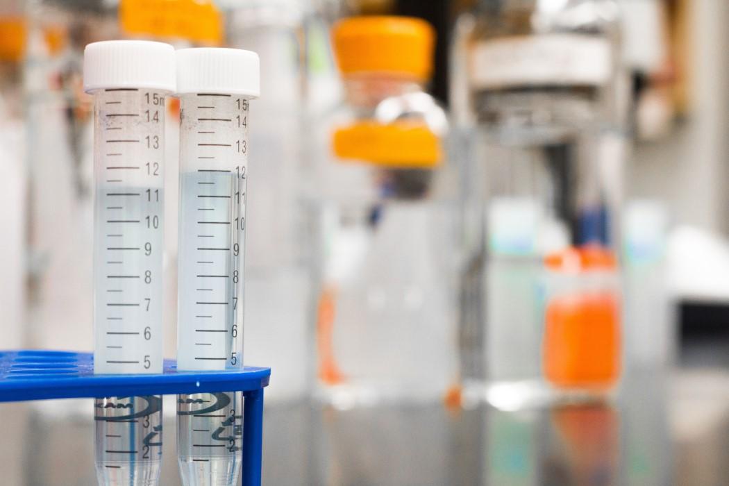 Un fármaco podría proteger contra el cáncer y evitar la obesidad