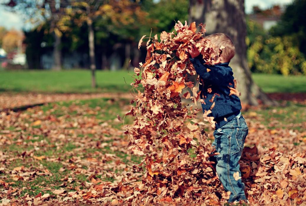 salud otoño