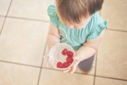 Las reglas de oro para prevenir las intoxicaciones alimentarias en verano 1
