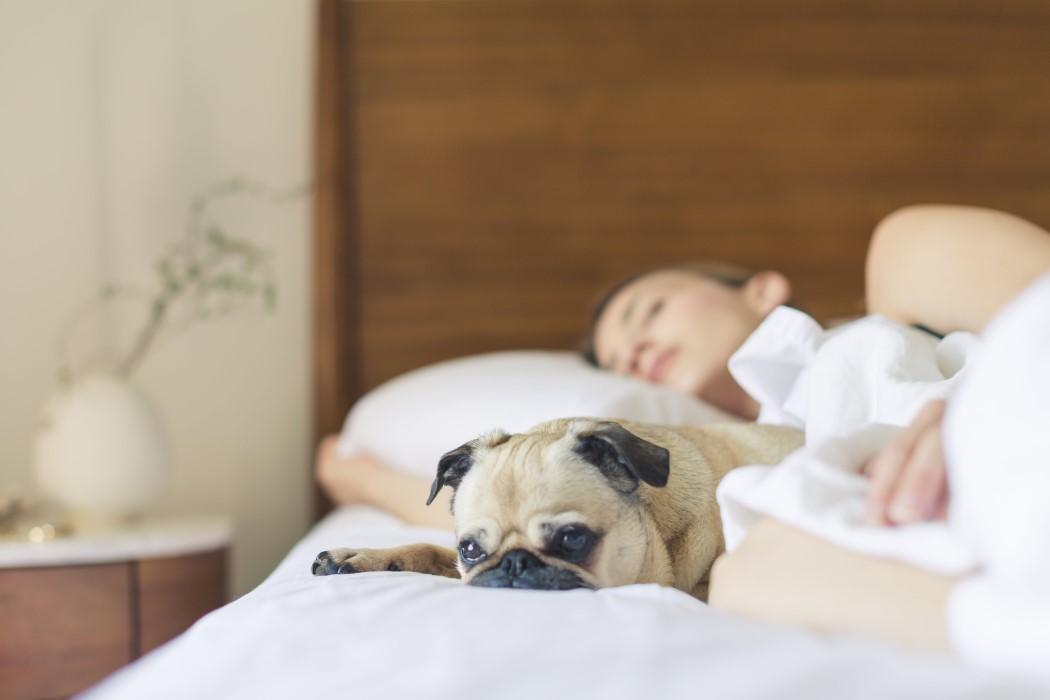 Remedios para tener un descanso saludable