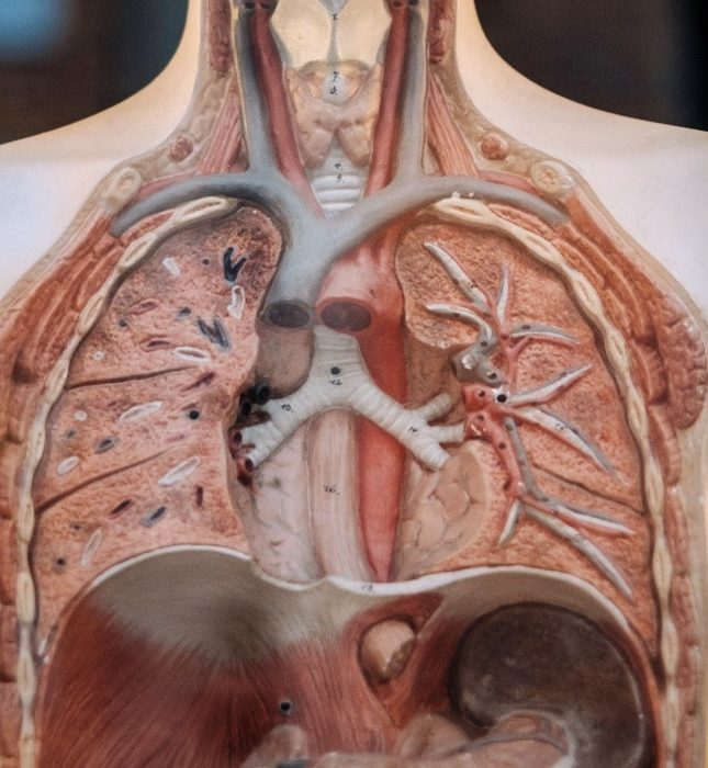 que es una embolia pulmonar