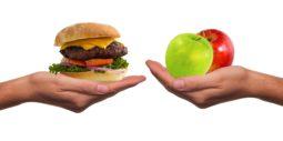 Información útil sobre las grasas transgénicas