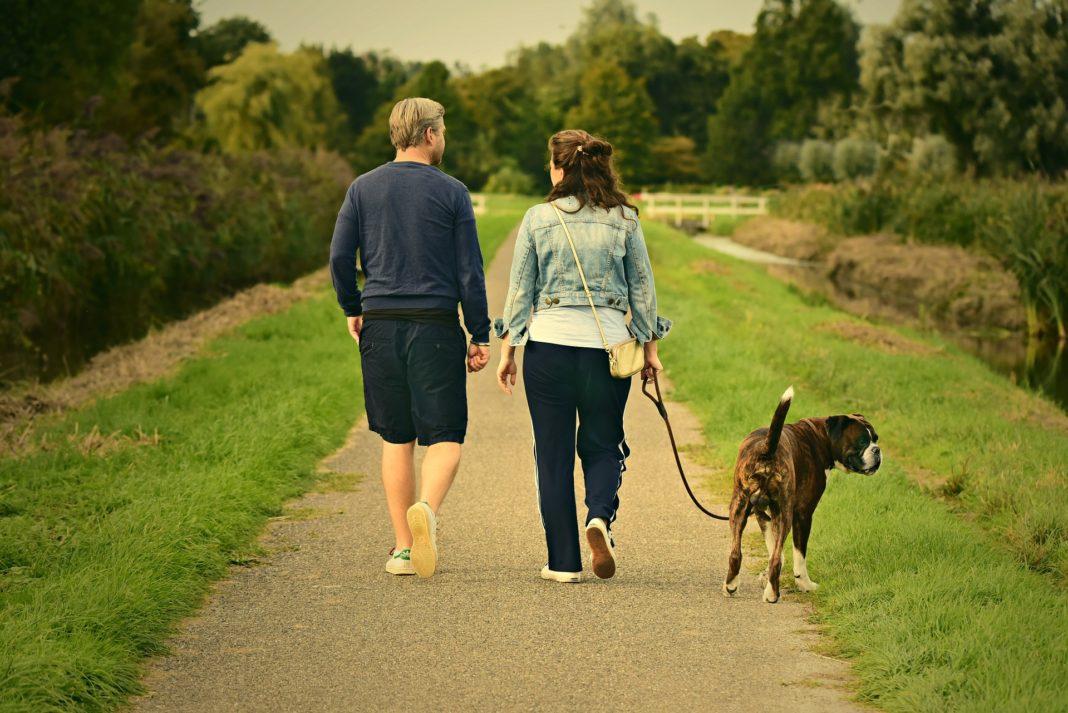 Salir a caminar diariamente mejora la salud