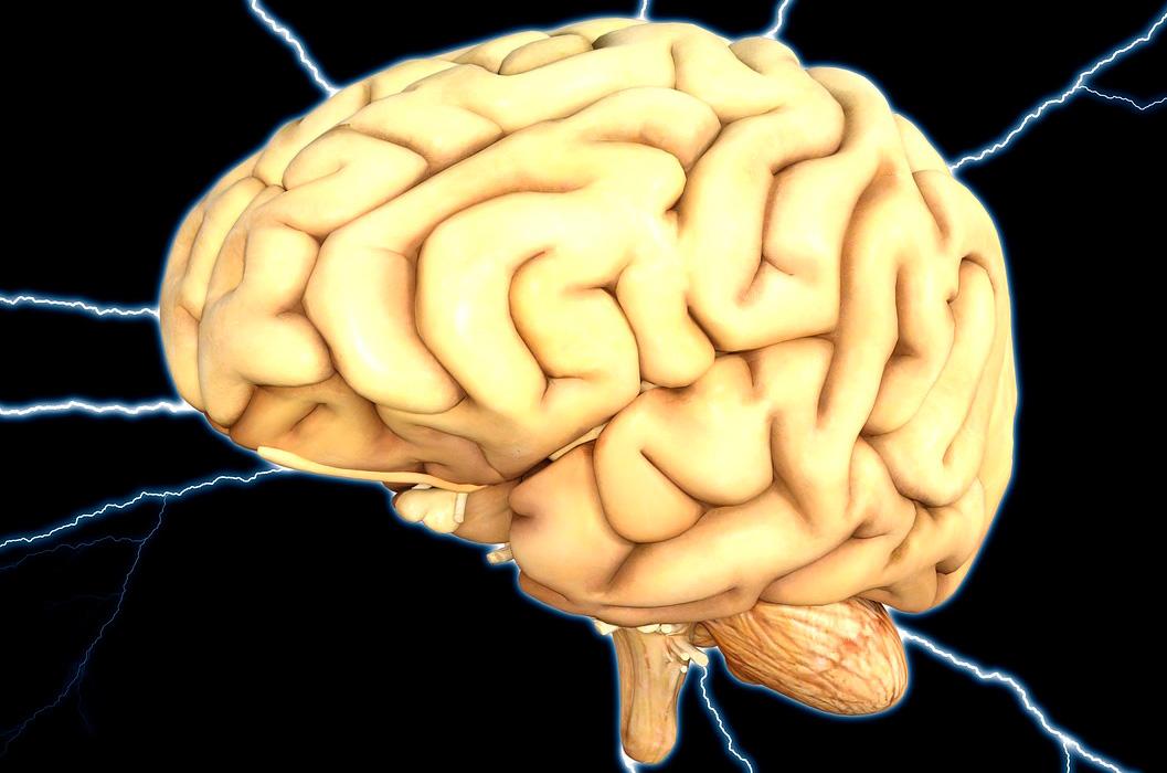 Todo la información sobre la parálisis cerebral